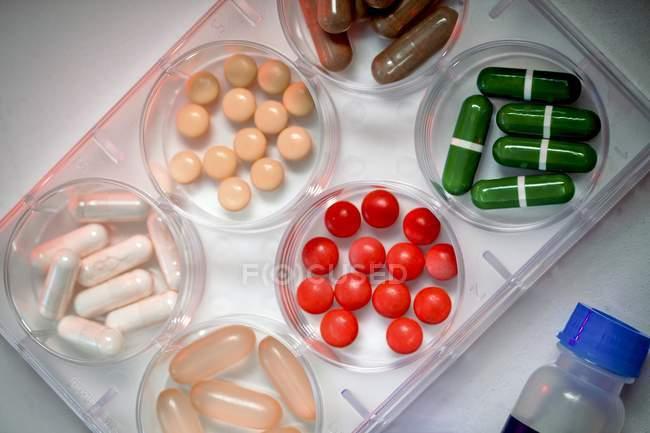 Разнообразие таблеток различной формы в чашках Петри, вид сверху. — стоковое фото