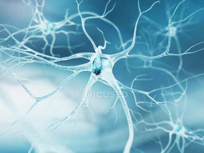 Cellules nerveuses et connexions axonales — Photo de stock