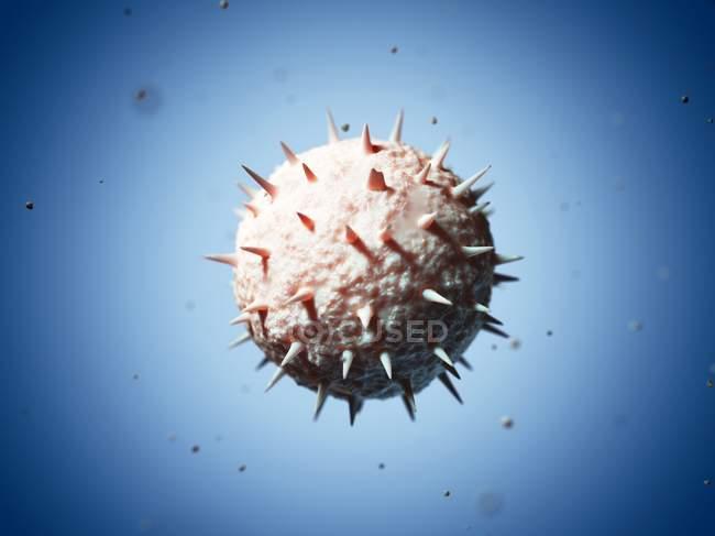 Venezuelan haemorrhagic fever virus — Stock Photo