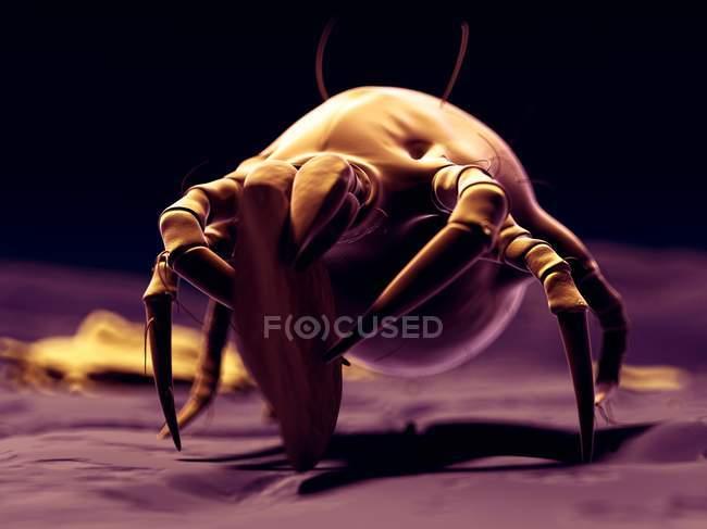 Dust mite consuming skin flake — Stock Photo