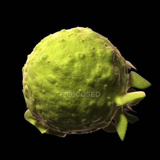Visual render of Mono virus — Stock Photo