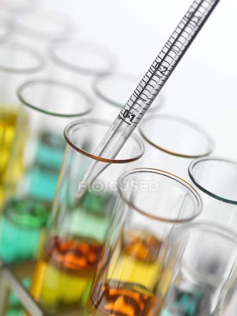 Крупным планом дозирования красочные жидкости в пробирки. — стоковое фото