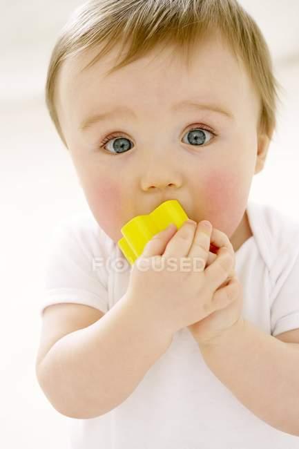 Портрет хлопчика жувати іграшки блок. — стокове фото