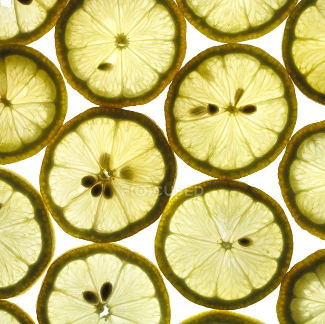 Close-up view of lemon slices on white background. — Stock Photo