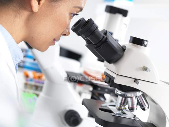 Женщина-ученый рассматривает образец ткани под микроскопом . — стоковое фото