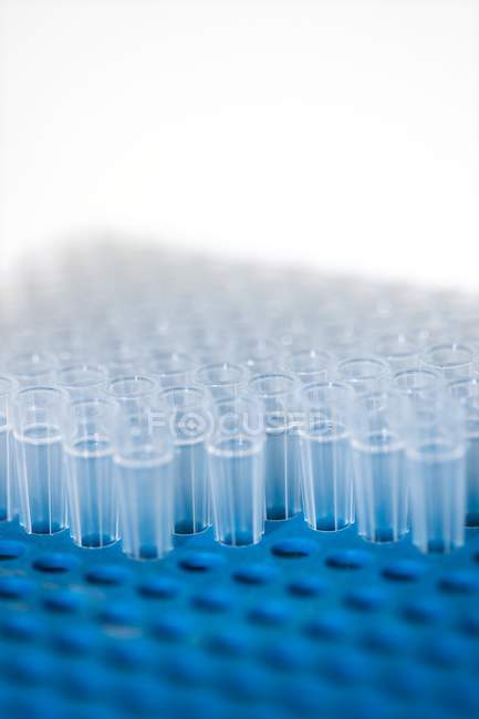 Close-up view of Eppendorf tubes. — Stock Photo