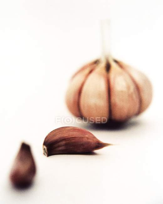 Крупный план гвоздики из луковицы чеснока на белом фоне . — стоковое фото