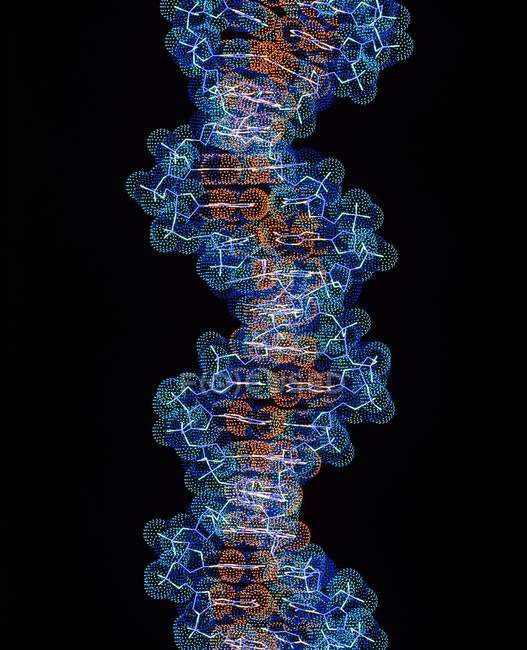 Strang der Dna beta — Stockfoto