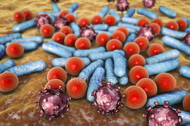Verschiedene Mikroben unterschiedlicher Form — Stockfoto
