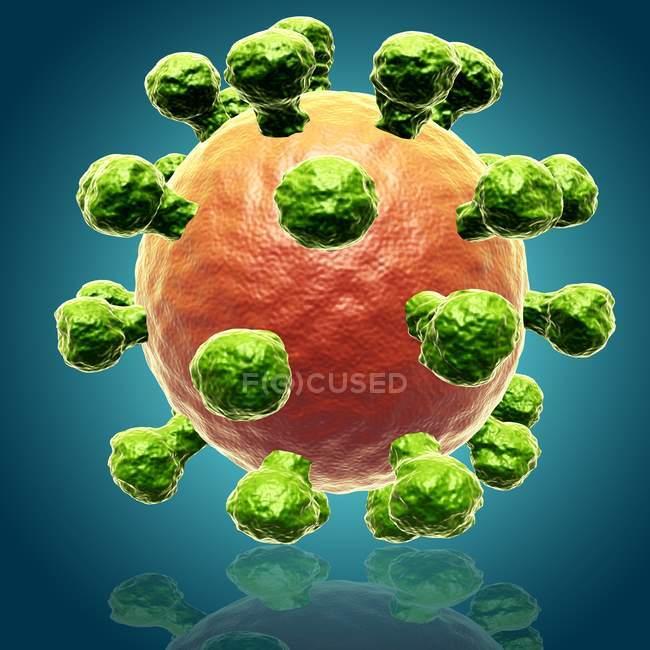 Риновирус - причиной простуды — стоковое фото