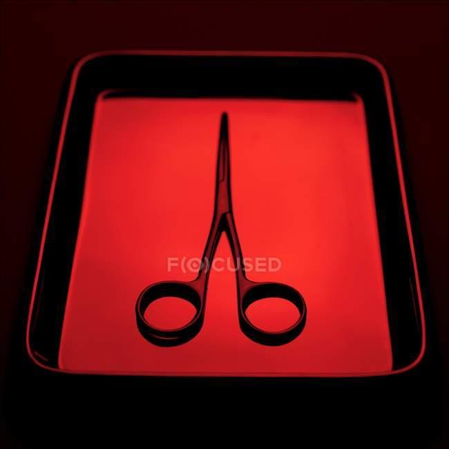 Forbici chirurgiche in vassoio in acciaio inox . — Foto stock