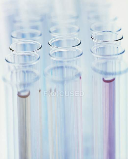 Group of laboratory test tubes with colored liquids. — Stock Photo
