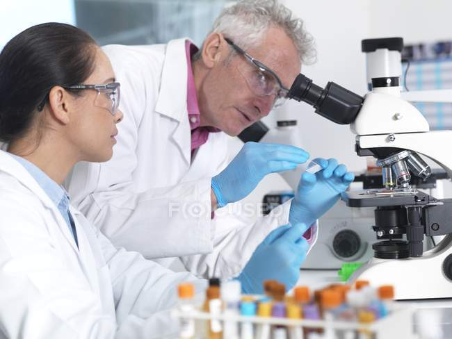Scientists preparing glass slide with sample in laboratory. — Stock Photo