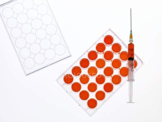 Дослідження стовбурових клітин — стокове фото