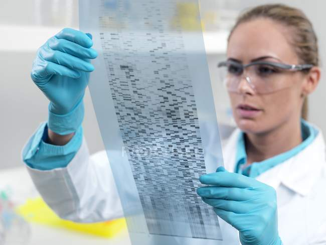 Female researcher studying DNA autoradiogram. — Stock Photo