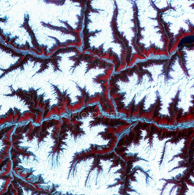 Natural pattern of vegetation and snow in Eastern Himalayas, satellite image. — Stock Photo