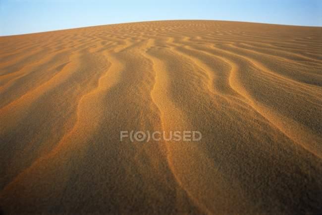 Ondulations dans la dune de sable du désert aux Émirats arabes unis . — Photo de stock