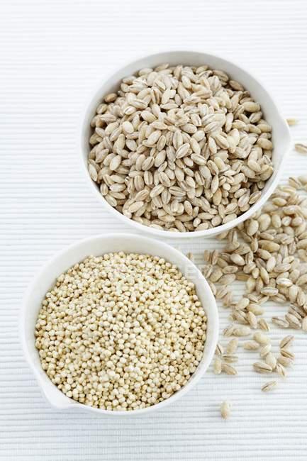 Semi di quinoa e orzo perlato in ciotole. — Foto stock