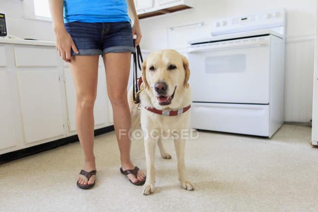 Женщина с собакой службы на кухне — стоковое фото