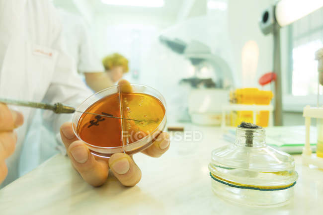 Scientist holding petri dish and syringe. — Stock Photo