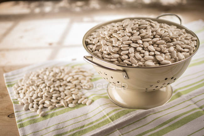 Tarbais beans in colander, still life. — Stock Photo