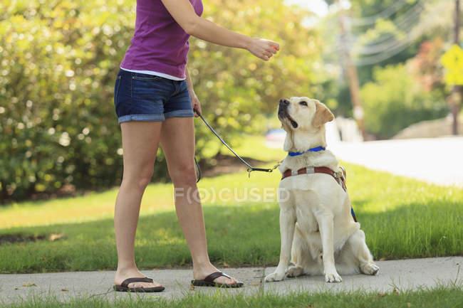 Mulher deficiente visual com seu cão — Fotografia de Stock