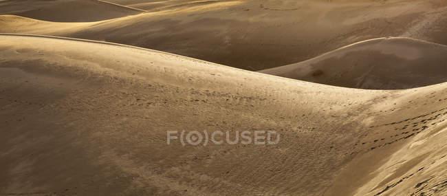 Sanddünen in der Sahara. — Stockfoto
