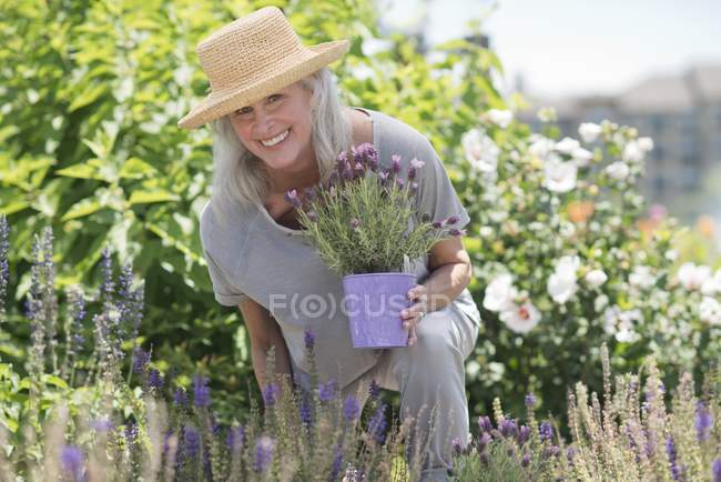 Senior woman holding potted lavender and smiling. — Stock Photo