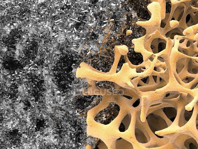 Estructura ósea y nanomaterial - foto de stock