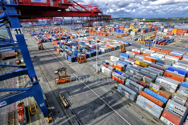 Container port with cranes and trucks in action. — Stock Photo