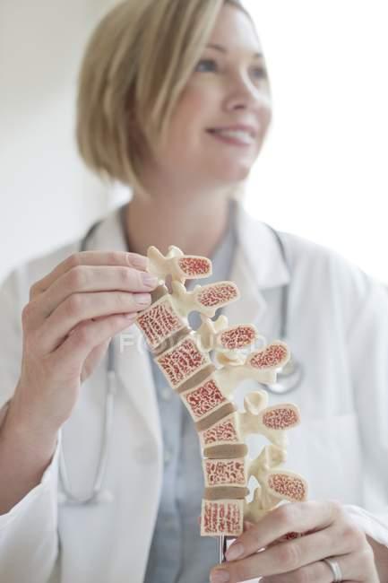 Médico femenino sosteniendo modelo anatómico de columna vertebral humana . - foto de stock