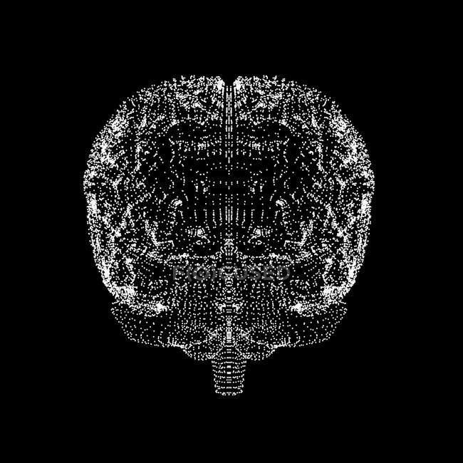 Visualización visual del cerebro humano - foto de stock