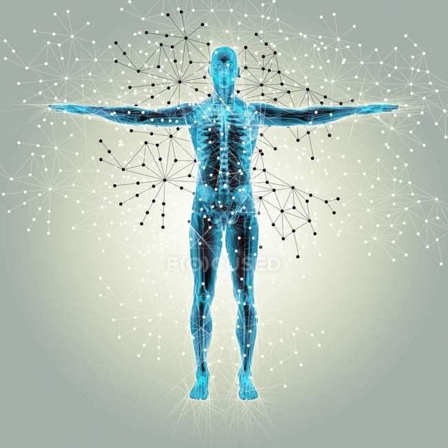 Estructura atómica del cuerpo humano - foto de stock