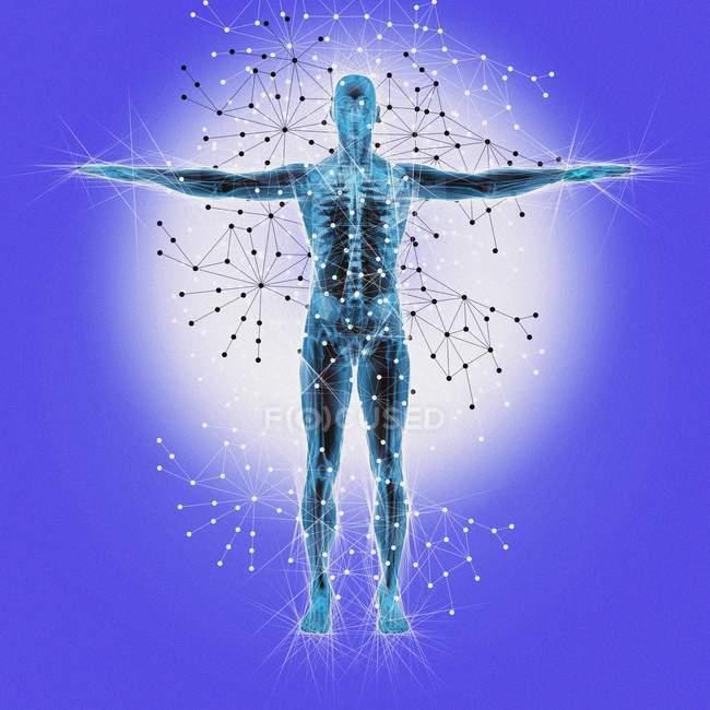 Struttura atomica del corpo umano — Foto stock