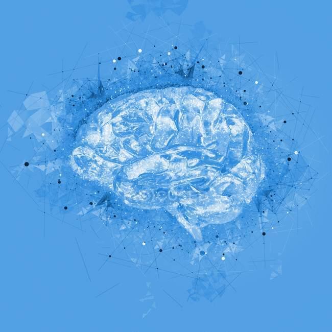 Концептуальная визуализация человеческого мозга — стоковое фото