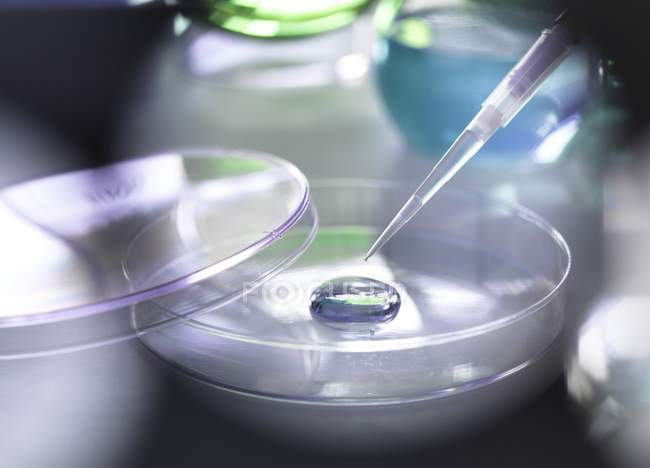 Pipette adding a solution to a sample — Stock Photo