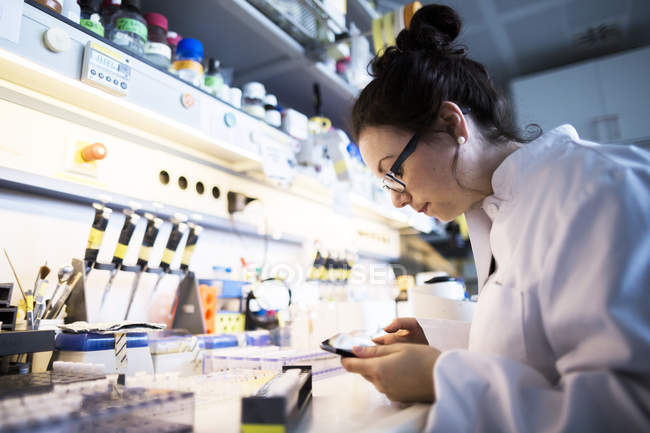 Female scientist working in a laboratory. — Stock Photo