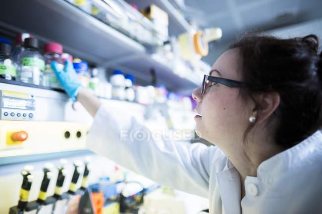 Female scientist working in laboratory. — Stock Photo
