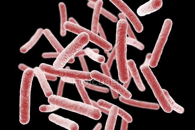 Mycobacterium chimaera batteri, illustrazione del computer . — Foto stock