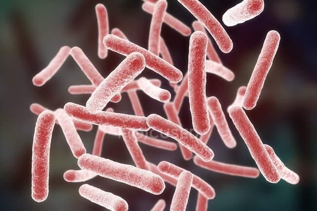 Mycobacterium chimaera bactérias, ilustração do computador . — Fotografia de Stock