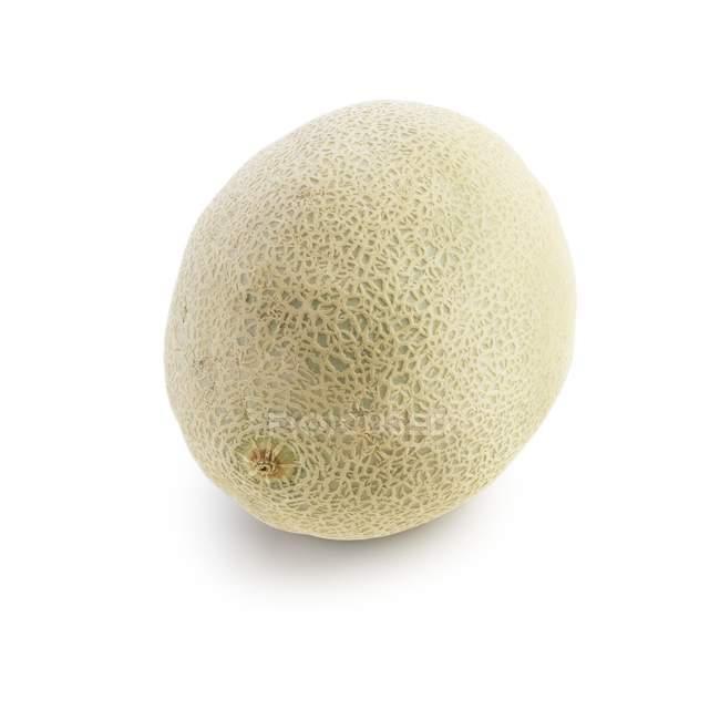 Melão cantaloupe em fundo branco. — Fotografia de Stock