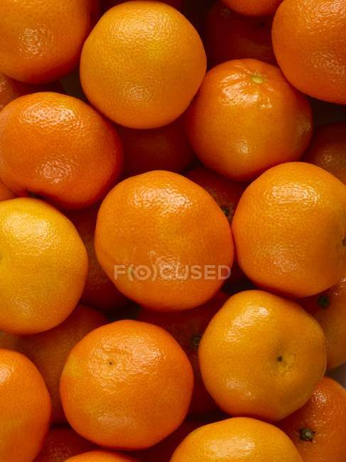 Close-up view of oranges, full frame. — Stock Photo