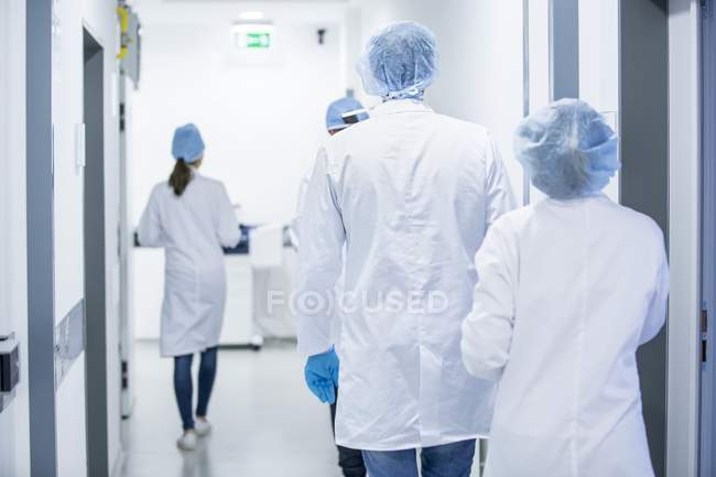 Врачи, ходить в больничном коридоре, вид сзади. — стоковое фото