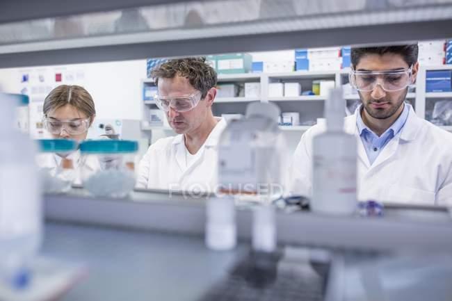 Лаборанты, работающие в лаборатории . — стоковое фото