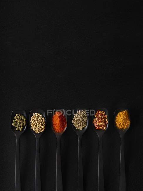Especias secas en cucharas, vista aérea . - foto de stock