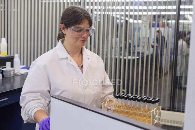 Female technician removing tray of test tubes. — Stock Photo