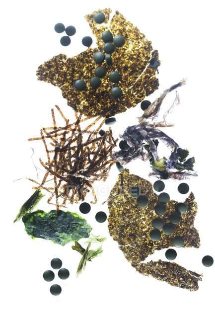 Algen Tabletten und Algen Pflanzen, Studio gedreht — Stockfoto