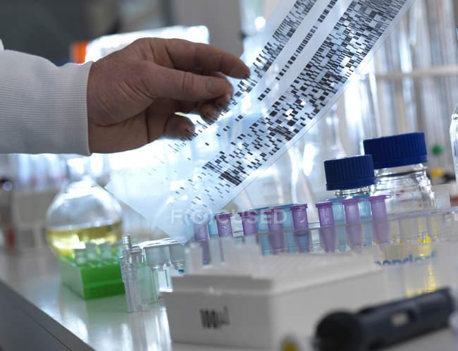 Scientist holding DNA autoradiogram in hand. — Stock Photo