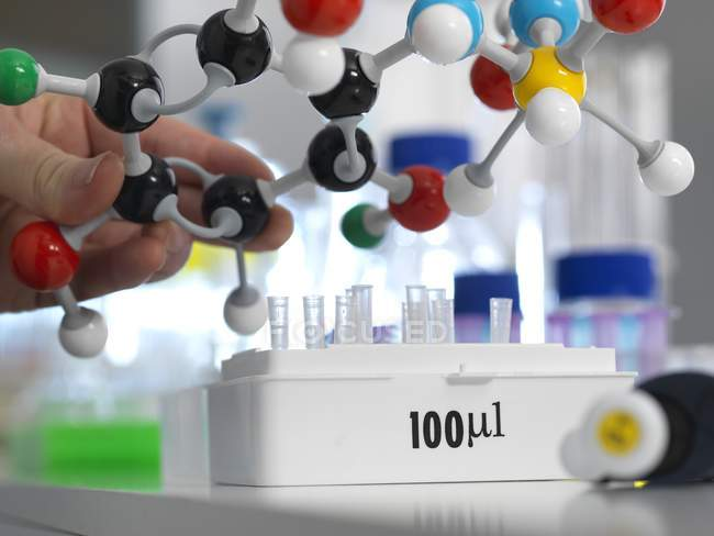 Researcher designing chemical formula with molecular model. — Stock Photo
