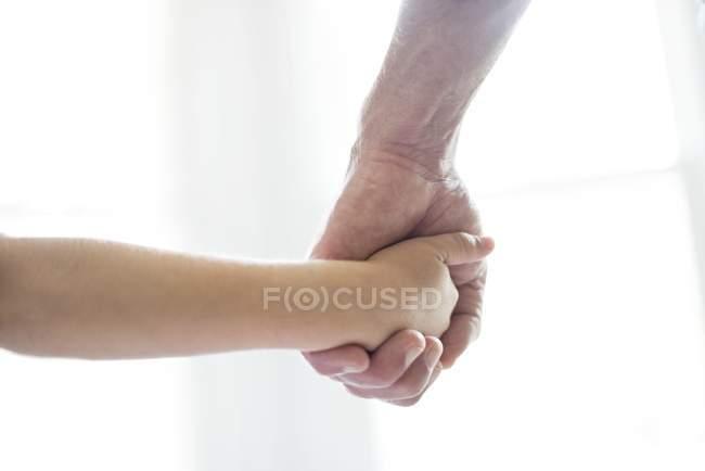 Child holding grandparent hand on white background. — Stock Photo